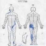 左陰部鼠蹊部から両足のシビレ痛み